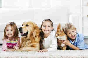 Pet Therapy? Sì, ma parliamone