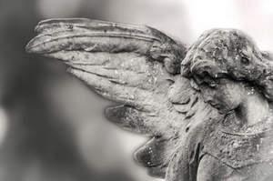 Sono un infermiere, non un angelo