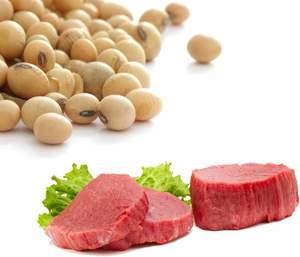La Soia come sostituito della carne