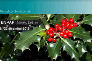 Le novità di dicembre per gli infermieri liberi professionisti